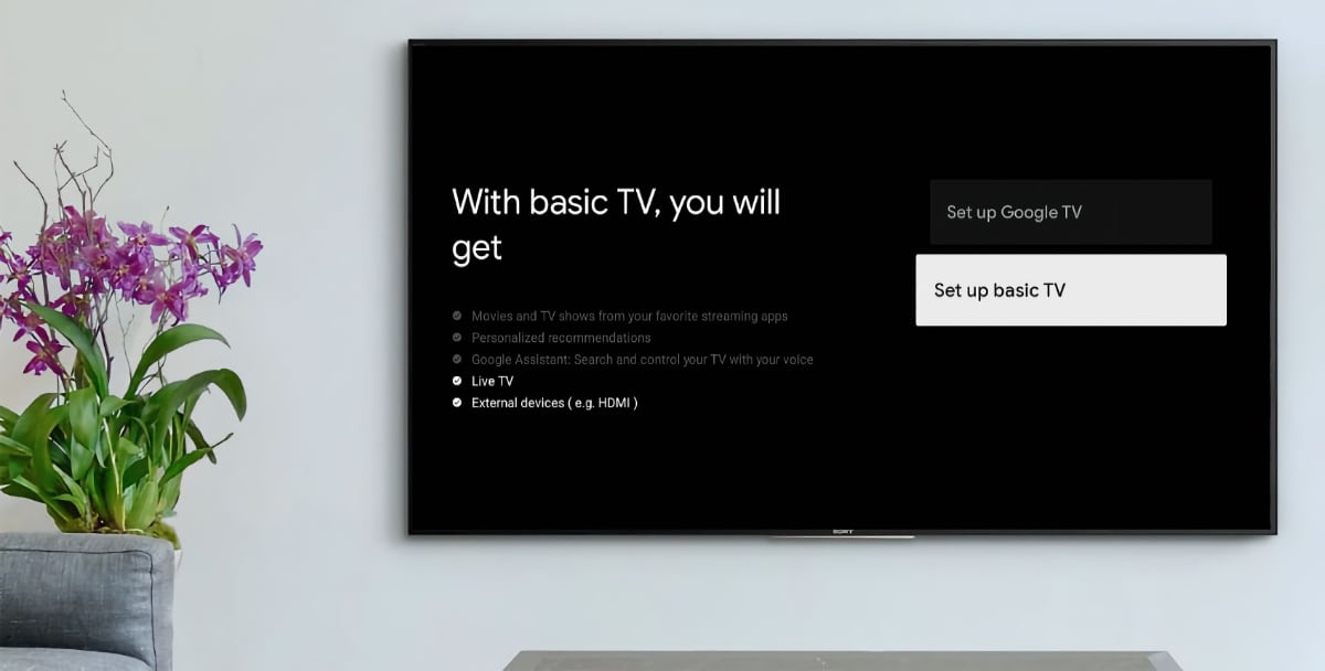 Google TV - Basic TV
