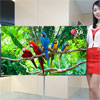LG transparent, flexible OLED